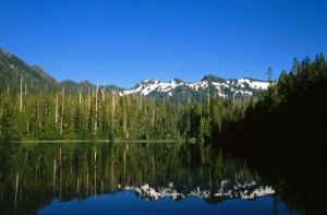 Majestic mountain scene inside Olympic National Park in Washington (NPS Photo)