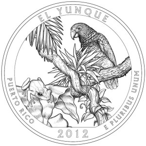 El Yunque National Forest Quarter Design
